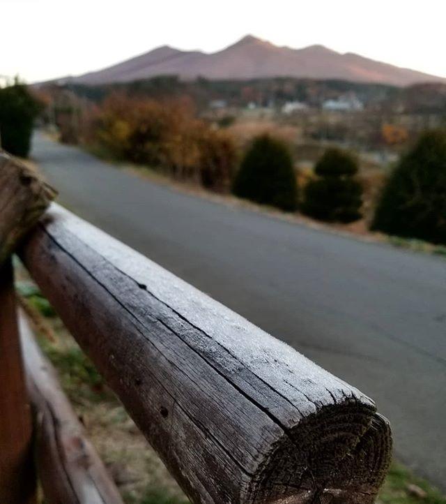 八ヶ岳の霜の朝 牧柵の丸太の上が真一文字に白くなる季節のはじまり #ひなぎくきつね #この庭のめぐる季節 201811