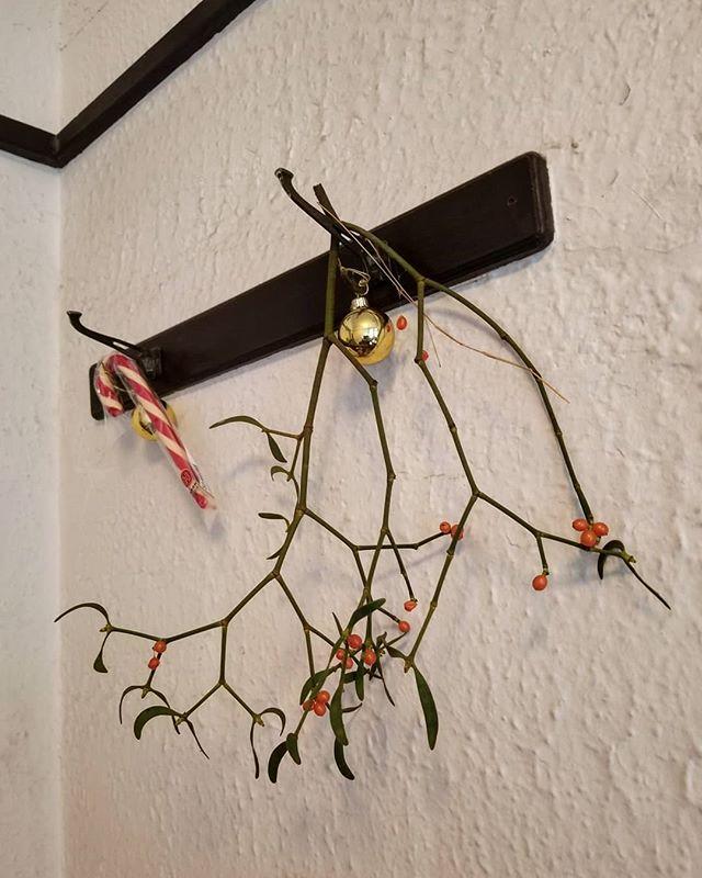#mistletoe #ひなぎくきつね