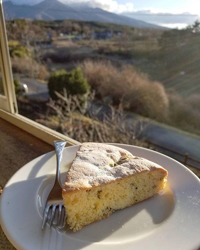 ふきのとう 季節の香りをうつすスポンジ早春篇 これを焼くと今年も春がきたと思います #butterbursproutcake #八ヶ岳めぐる庭の菓子売り場 #ひなぎくきつね
