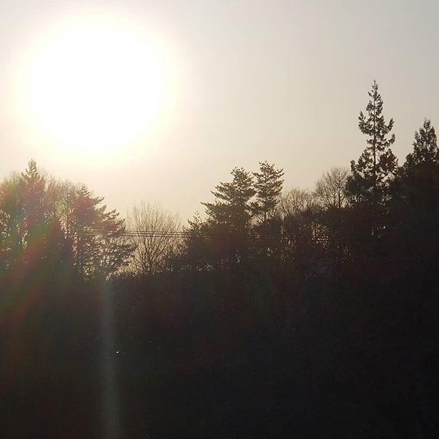 満月も朝日もあるぞ八ヶ岳 #八ヶ岳の空機嫌 #八ヶ岳この庭のめぐる季節 #ひなぎくきつね
