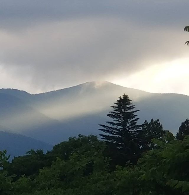 #ひなぎくきつね #八ヶ岳の空機嫌