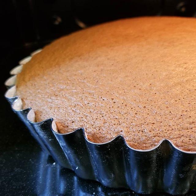 島ガール過去十年 これほど美しくパーフェクトな姿でオーブンから出てきたガールは 初めてかも…… #全粒粉スポンジ #ひなぎくきつね #wholewheatspongecake