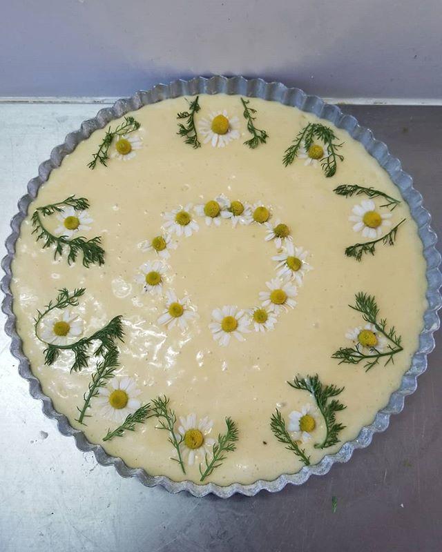 カモミールのバタースポンジ #八ヶ岳めぐる庭の菓子売り場 #季節の香りを移すスポンジケーキ #ひなぎくきつね #allthebeautifulthings