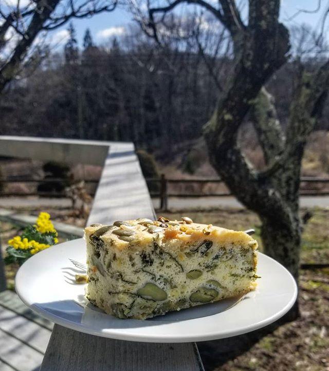 青菜とそら豆のケークサレ レモン風味 #八ヶ岳めぐる庭の菓子売り場 #ひなぎくきつね #ケークサレベジ #cakesalevegetarian