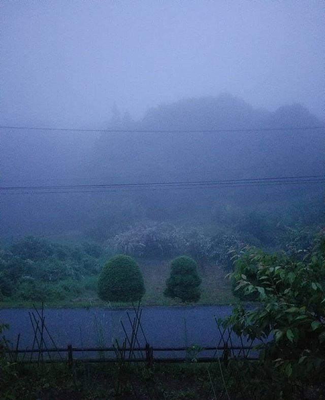 あす諏訪は大雨注意報 #ひなぎくきつね #八ヶ岳の空機嫌